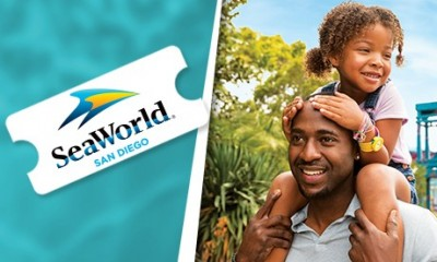 Sea World San Diego - Ticket 1 dia