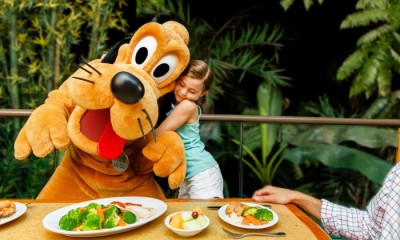 7 noches - Walt Disney World Resort - Plan de Comidas Regular GRATIS!!!!